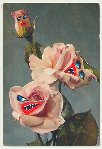 The Angry Roses, 2