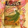 Marina Gutierrez - Casita 3 - detail -plantain chips