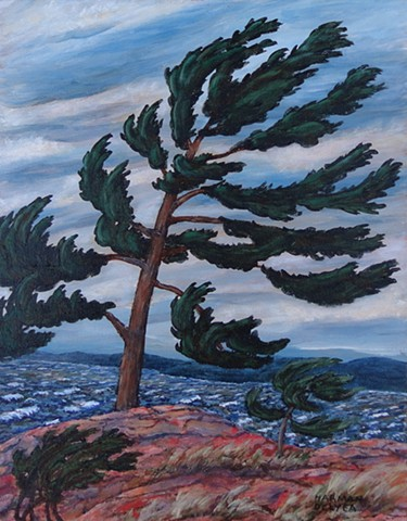 A painting of a wind-swept Jack Pine tree in Killbear Provincial Park near Parry Sound, Ontario, on the shore of Georgian Bay