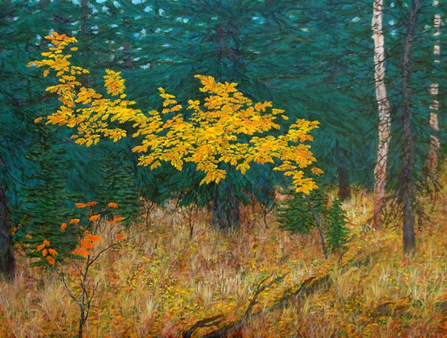 A painting of mountain ash changing colour in the fall, autumn near Fernie, B.C.