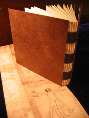 DaVinci Artist Book