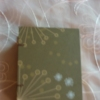 Green Travel Book