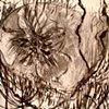 drawings_-_02_lg