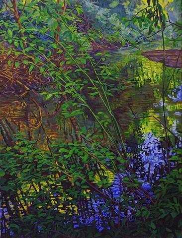 Dark Creek Reflection