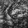 Springtime Creek Charcoal