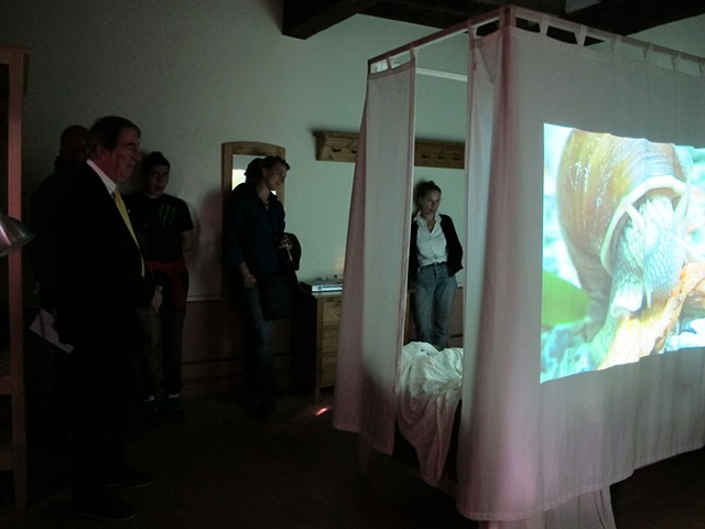 "Group watching ""Lumaca"" video"