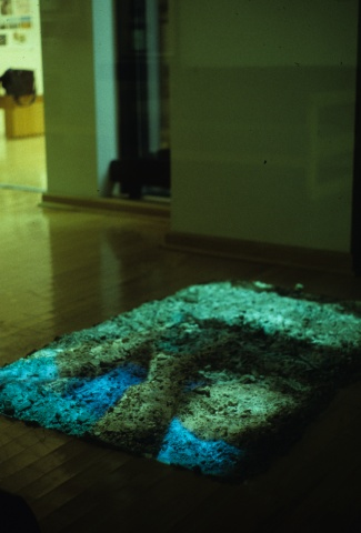 Samba Corporal - Installation View at Koehnline Museum of Art
