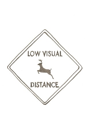 Low Visual Distance: A Process Book