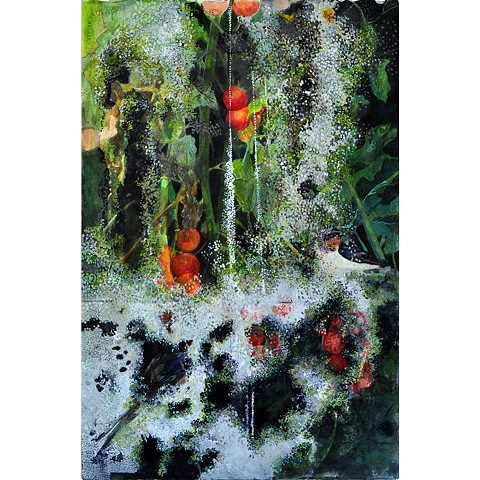 Bird, tomatoes and mold
