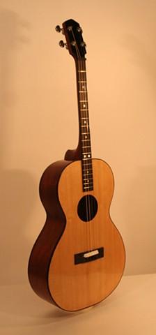 Mahogany Guitar