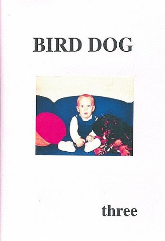 Bird Dog literary journal, Sarah Mangold, innovative writing, poetry