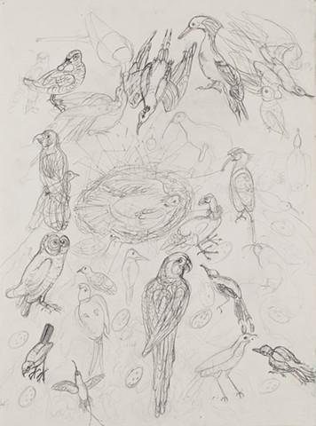 passenger pigeon, glaucous macaw, carolina parakeets,Ivory -billed woodpecker
