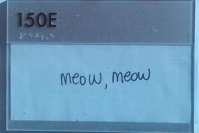 meow, meow
