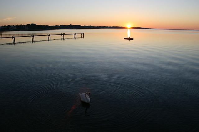 sunrise: August 30, 2010
