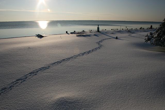 sunrise: January 27, 2011
