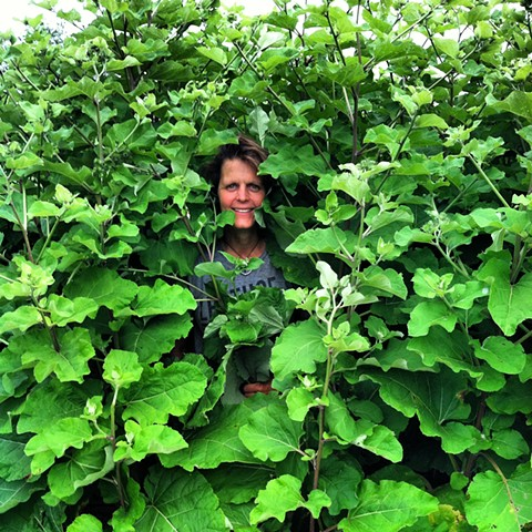 Patty and Burdock Root