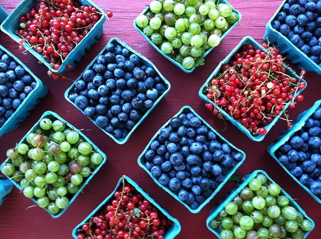 Fresh Berries, Briermere Farms
