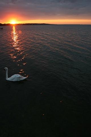 sunrise: August 3, 2010