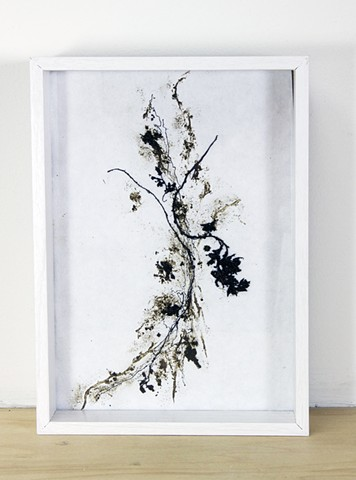 seaweed, seagrass, tar, Cyclades, Aegean Sea, Greece, Pacific, Dimitra Skandali, Don Soker Gallery, San Francisco