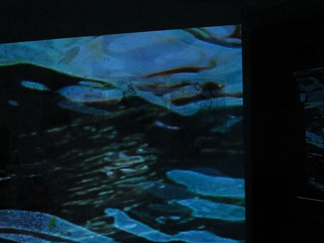 Dimitra Skandali, The Studios of Key West, Key West, Contemporary Art, Aegean Sea, Site specific installation