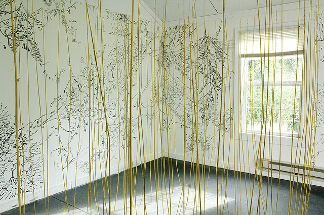 St Mary's College of Maryland, Maryland, water, water paths, Dimitra Skandali, Artist in Residence, the Artist House, site specific installation