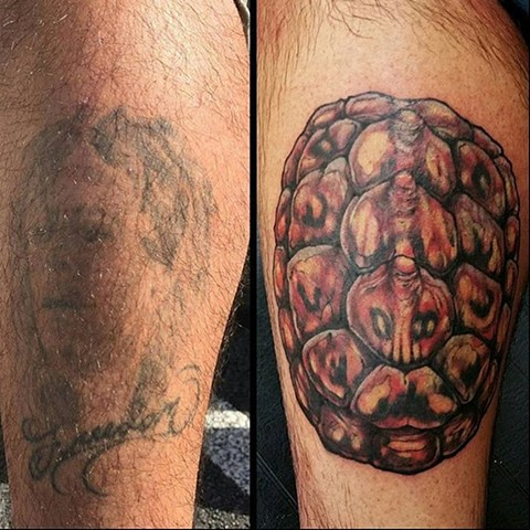 Turtle Shell Cover Up Tattoo