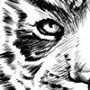 Zodiac Legacy: Tiger