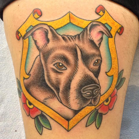 traditional pittbull tattoo tad peyton