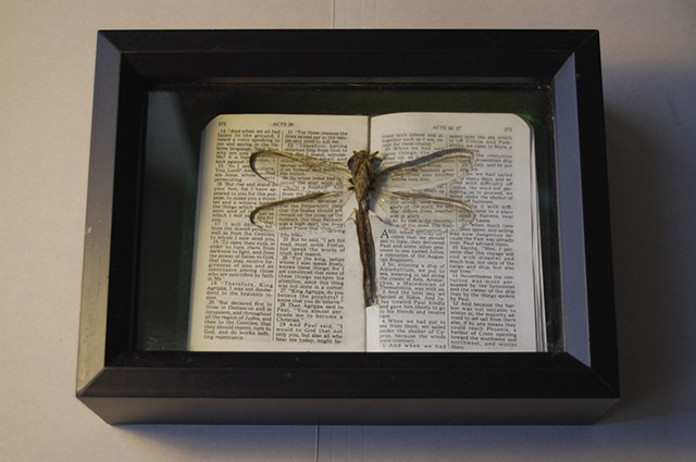 Dragonfly resting in lasercut pocket of New Testament.