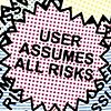 User Assumes All Risks