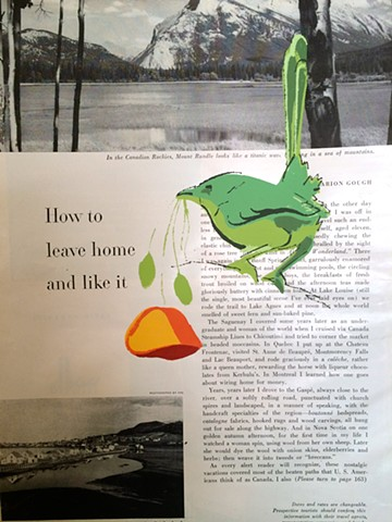 Wren with poppy silkscreened on 1950's magazine