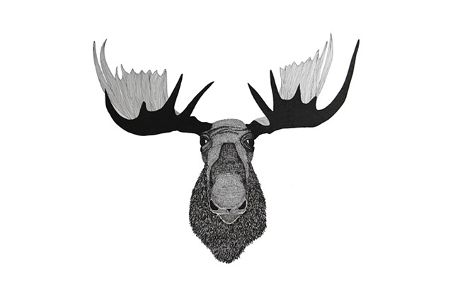 The Hunting Party Series, Moose. Illustration by Dani Green
