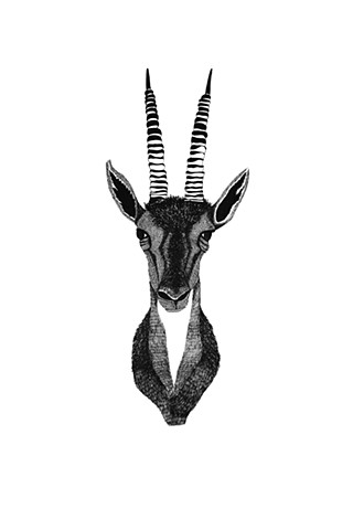The Hunting Party Series, Gazelle. Illustration by Dani Green