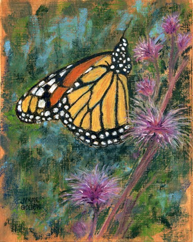 Monarch, Butterfly, Wildflower, Pollinator