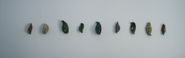 Seed pods I