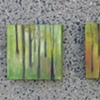 Forest series, each