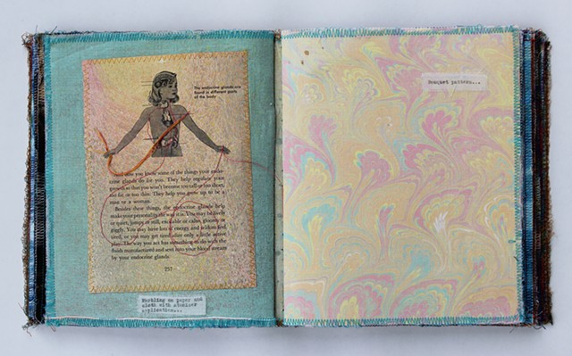 Meadowlark MAAP Sample Book (detail 3) by Lesley Patterson-Marx