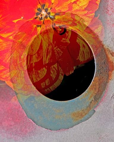 Garden Black Hole