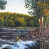 Landscape with Beaver Dam (Wita Creek)