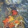 Blue Earth River (Leaves)