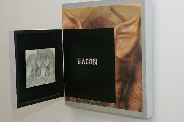 Where Does Bacon Come From?  open detail