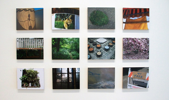 Flat Land Series image grid from Cut and Dry