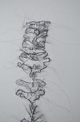 hair sculpture, hair drawing, spine sculpture, hair spine drawing