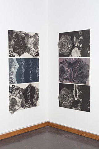 installation shot for Temporal Cycles