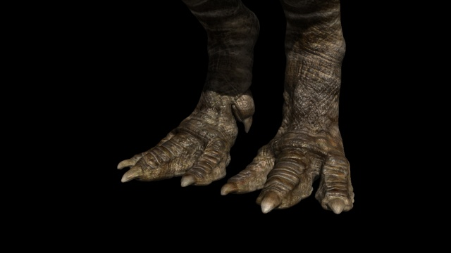 Rajasaurus foot detail