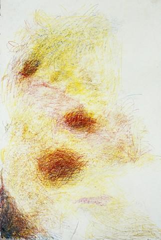 Adam Derums, large scale drawing, WA artist.