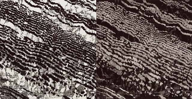 Trace Monotype of soil left by the water of rivers, floods, by Debra Jewell artist & printmaker, Felix Kulpa Gallery, Santa Cruz CA