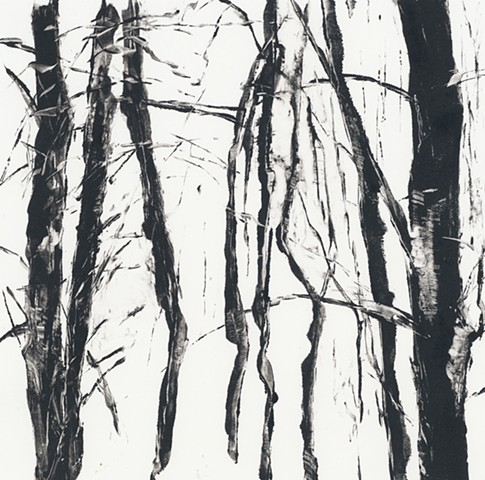 Monotype print of forest tree branches on Rives BFK printmaking paper by artist printmaker Debra Jewell