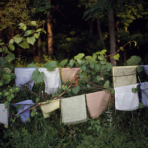 Prayer Flags on the Edge of the Woods #3, Orgyen Chö Dzong, New York, 2010