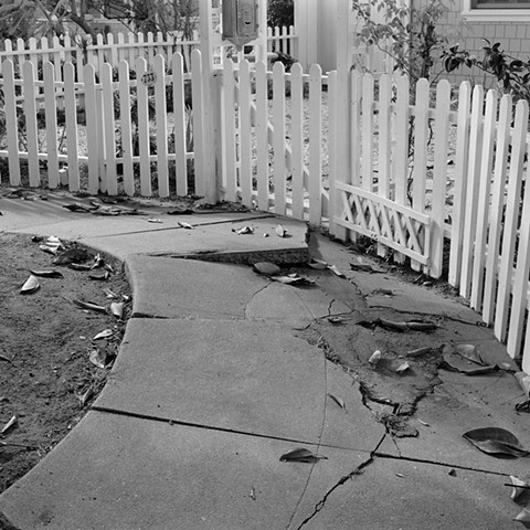 Cracked Sidewalk and Picket Fence
